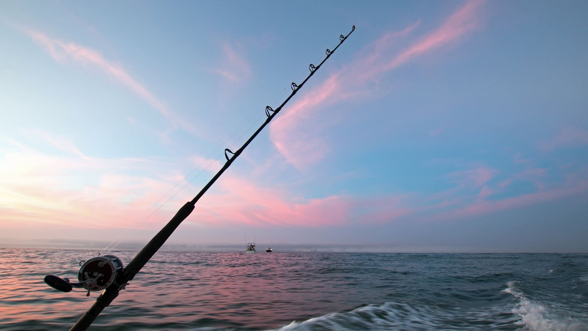 Can You Use Earthworms For Sea Fishing