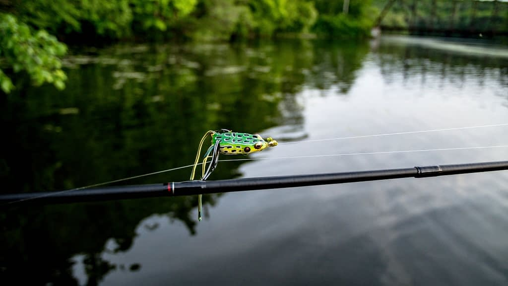artificial frog