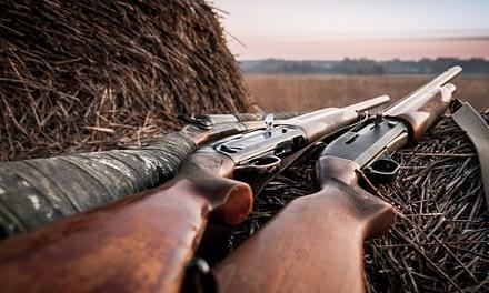 How To Choose A Deer Hunting Shotgun
