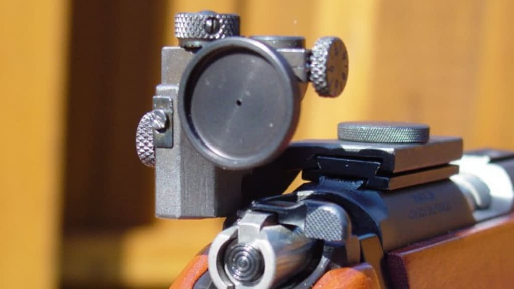 Aperture iron sight for hunting