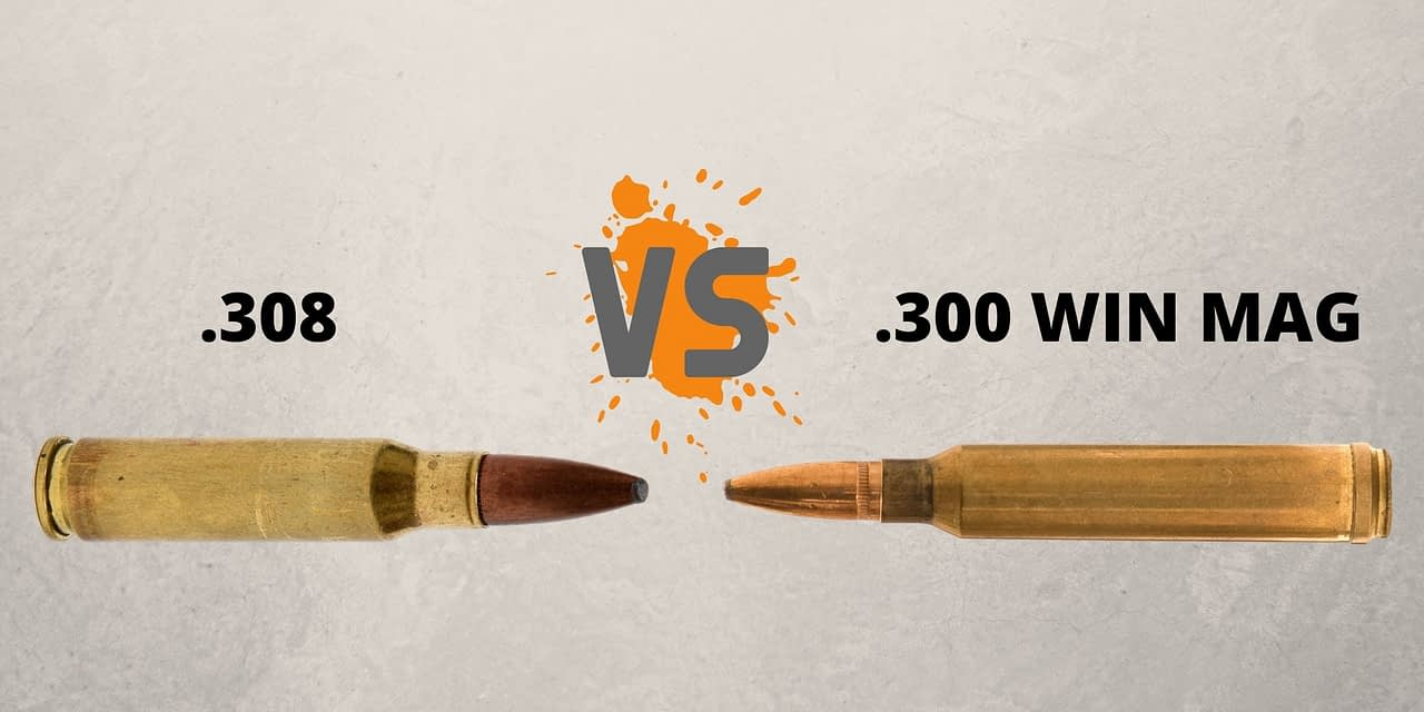.308 Vs .300 Win Mag