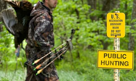 Hunting Turkeys With A Bow