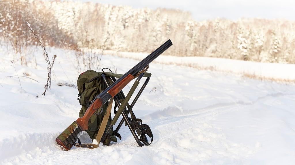 shotgun in snow