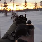 Iron Sights For Hunting