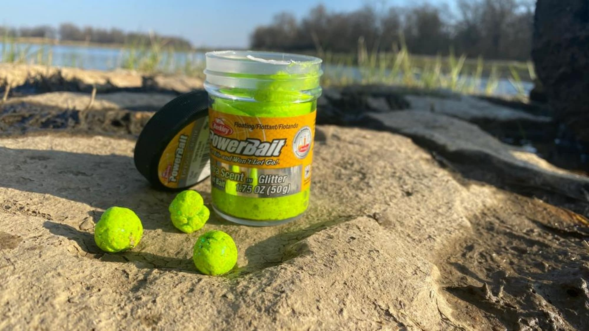 Best Powerbait For Trout
