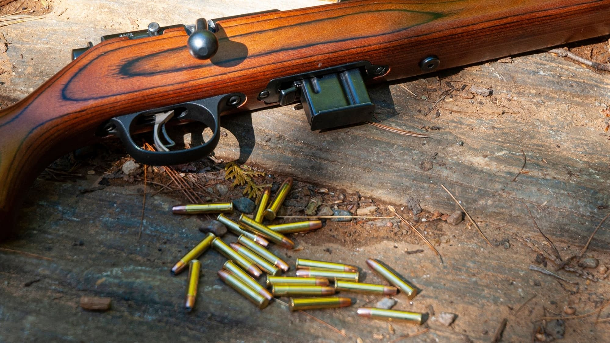 22lr hollow point vs solid for hunting