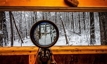 Where To Shoot A Deer