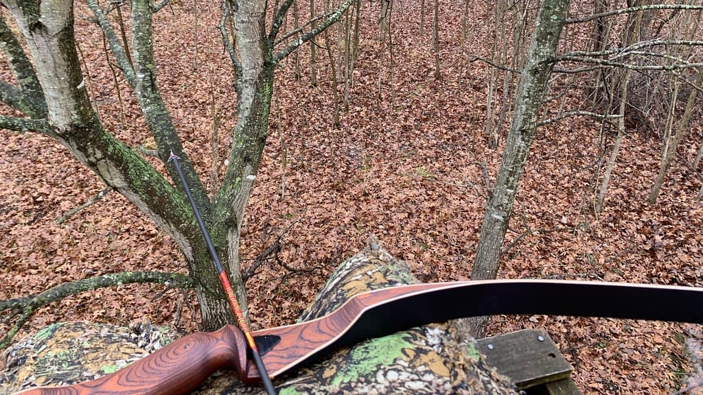 traditional bow hunting