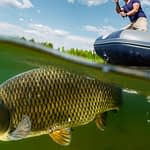 What's the Difference Between Buffalo Fish and Carp?