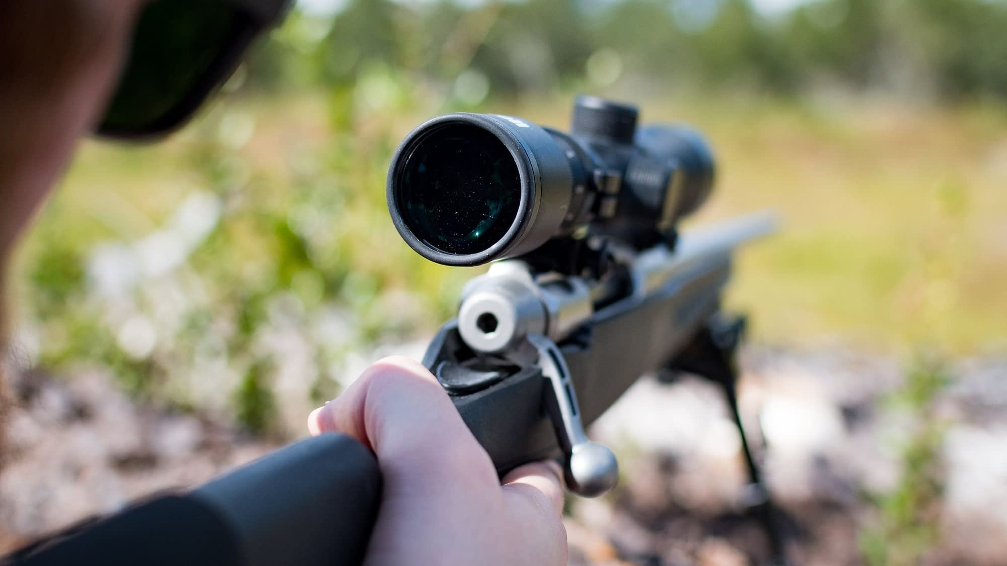 How to sight a rifle