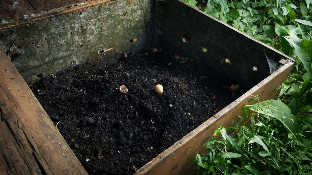 box for breeding worms