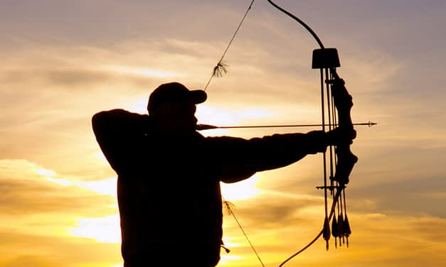 Traditional Bowhunting For Beginners